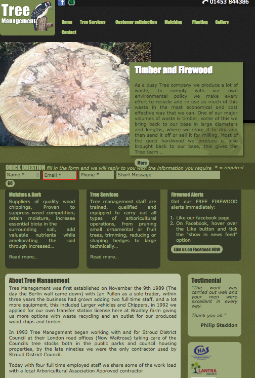 website development for local businesses from Mushroom Internet Ltd
