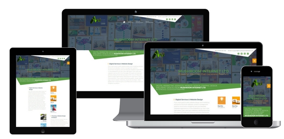 website development, mobile responsive website design from Mushroom Internet Ltd